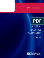 Auditing_the_Control_Environment.docx