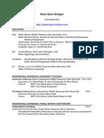 Stringer CV October 2013 public.pdf