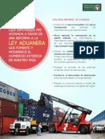 Infografía Ley Aduanera - GPPRI