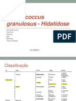 Echinococcus Granulosus - Hidatidose