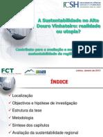 ADV Presentation.03.01.2013