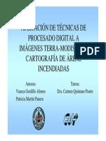ppt - incnedios 2004 modis
