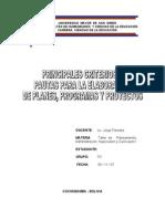 10 Principales Criterios o Pautas Para La Elaboracion de Planes Programas y Proyectos (1)