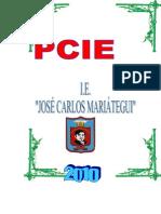 PCIE CUNCA 2010