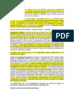Cambio de Rumbo Martuccelli Danilo.