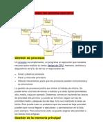 Gestión de procesos.pdf