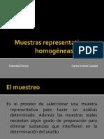 Muestras representativas y homogéneas.pptx
