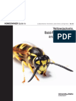 WASP Identifications.pdf