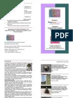 Lista de Precios Orgonitas Catalogo