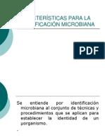 II.6. IDENTIFICACIÓN MICROBIANA
