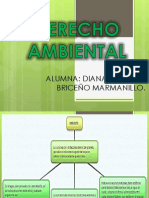 Derecho Ambiental T M E U