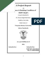 parveen chauhan   hdfc vmu  project Final.pdf