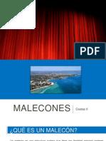 Male Cones