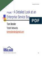 BenderESBMule.pdf