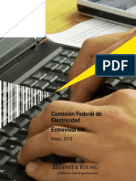 CFE_Entrevista_AM_220313.docx