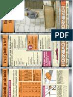 Ridicarea Zidurilor.pdf