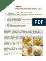 Cornulete Fragede.doc