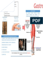Poster Anatomi dan Fisiologi (Karnival Akademik 2013).docx