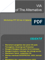 pit_idi[1].ppt