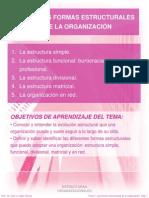 Tema 4 Las Formas Estructurales de La Organizacion