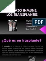 rechazoinmunetrasplantes-091030212811-phpapp01