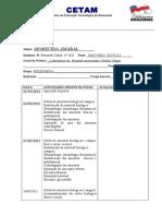 Modelo de Relatório Diário Correto