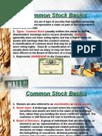 13020045 Common Stock Basics