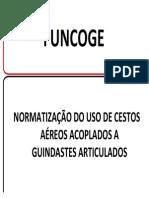 Manual Cesto Aereo Do Mtb