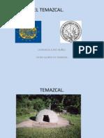 TEMAZCAL.pdf