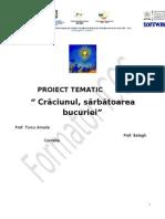 proiect craciun
