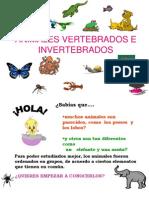animalesvertebradoseinvertebrados-090528125904-phpapp02