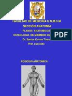 Osteologia m.s Unmsm - Correa 2