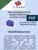 Corina Del Pozo - Acumulaciones y Subdivisiones