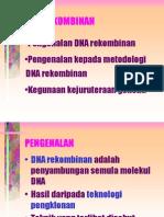 dna rekombinan.PPT