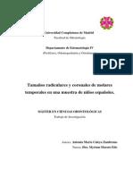 Tamaños_radiculares_y_coronales_de_molares_temporales o Deciduos