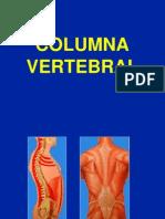 1- Columna Vertebral - Generalidades (1)