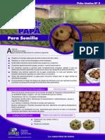 5.Almacen papa semilla (1).pdf