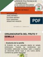Exposicion Botanica Fruto y Semilla.