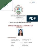 Ensayo Nariz Mestiza Andina, Propuesta Quirúrgica