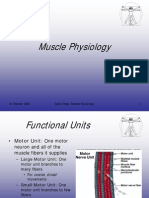 Muscle Physio
