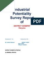 Industrial Potential Survey Report.rtf