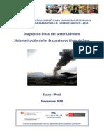 Diagnostico Linea Base Peru