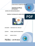 Yamunaque Cruz Jose Luis- Equipos y Materiales de Laboratorio Clinico