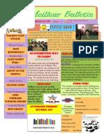 4g newsletter oct 2013