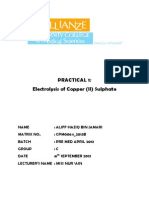 LR 1 Electrolysis of copper sulphate.docx