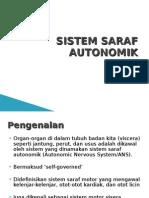 Sistem saraf autonomik