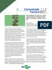 Recomendações tecnicas para o cultivo e epoca de plantio da cultivar de mamoneira BRS 149 (LCSilva)