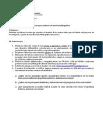 Pauta 2º Informe bibliográfico 2013