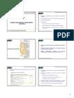 (Aula 04) Cadeia respiratória e fosforilação oxidativa