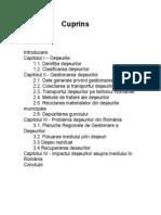 Poluare.doc